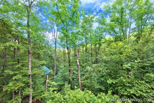 Spring view from deck at Black Bear Magic, a 4-bedroom cabin rental located in Gatlinburg