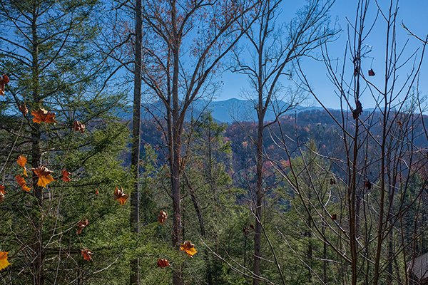 Looking at Mt. LeConte through the trees at Mountain Top View, a 3 bedroom cabin rental located in Gatlinburg