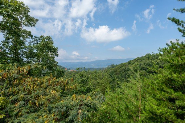 Trees and a ridgeline view at American Beauty, a 2 bedroom cabin rental located in Pigeon Forge