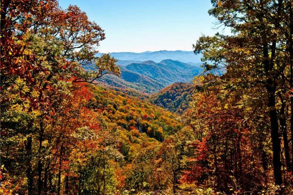 Fall colors and mountain views at Wild at Heart, a 1 bedroom cabin rental located in Gatlinburg