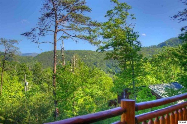 Looking out onto the trees at Rising Wolf Lodge, a 3 bedroom cabin rental located in Pigeon Forge