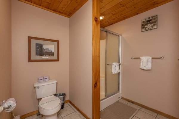 Shower in a bathroom at Almost Bearadise, a 4 bedroom cabin rental located in Pigeon Forge