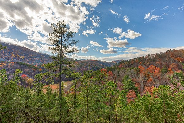 Fall colors viewed from at R & R Hideaway, a 1 bedroom cabin rental located in Pigeon Forge
