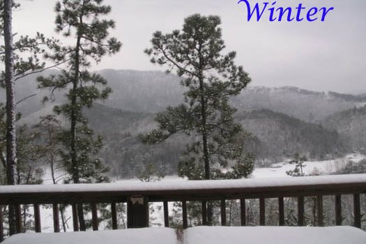 Snow in the Smoky Mountains at R & R Hideaway, a 1 bedroom cabin rental located in Pigeon Forge