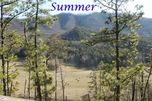 Smoky Mountains summertime view at R & R Hideaway, a 1 bedroom cabin rental located in Pigeon Forge