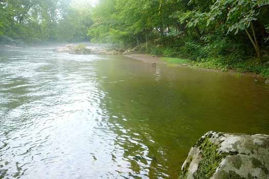 River access at Dolly's Adorable River Cottage, a 3-bedroom cabin rental located in Pigeon Forge