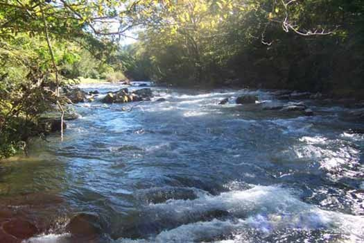 river running at dolly's adorable river cottage a 3 bedroom cabin rental located in pigeon forge