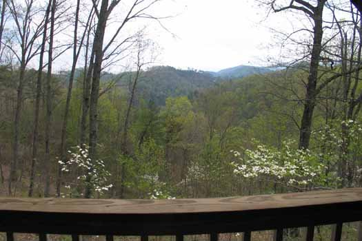 Smoky Mountain view from Love Me Tender, a 1 bedroom cabin rental located in Pigeon Forge