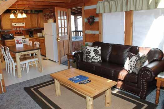 living room area with sleeper sofa at smoky mountain romance a 1 bedroom cabin rental located in pigeon forge