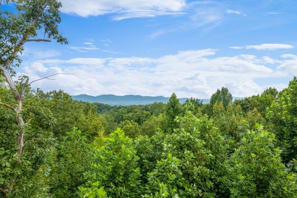 Mountain view at Pool & a View, a 2 bedroom cabin rental located in Gatlinburg