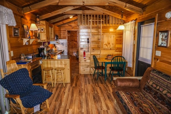 Living room at Cozy Cabin, a 2-bedroom cabin rental located in Gatlinburg