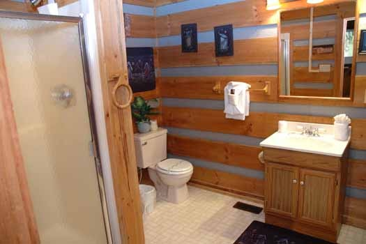 bathroom with shower at a panoramic view a 1 bedroom cabin rental located in pigeon forge