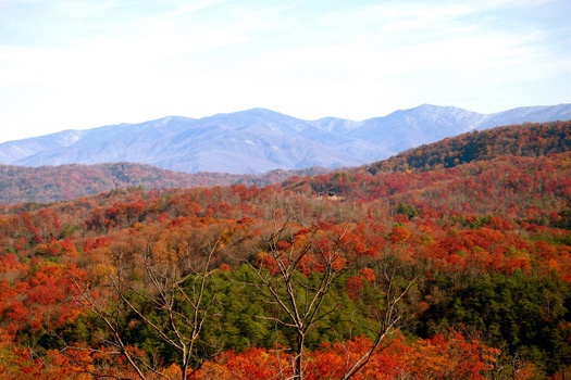 fall colors captured from horse'n around a 3 bedroom cabin rental located in pigeon forge