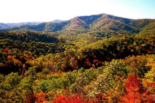 view of the smoky mountains in the fall season from horse'n around a 3 bedroom cabin rental located in pigeon forge
