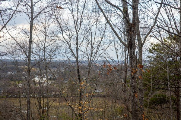 Wooded view at Pigeon Forge Pleasures, a 3 bedroom cabin rental located in Pigeon Forge