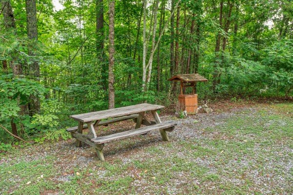Picnic table in the yard at Aw Paw's Place, a 1-bedroom cabin rental located in Pigeon Forge