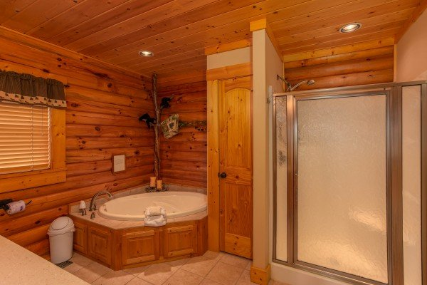 Bathroom with a jacuzzi tub and separate shower at I Do Love Views, a 3 bedroom cabin rental located in Pigeon Forge