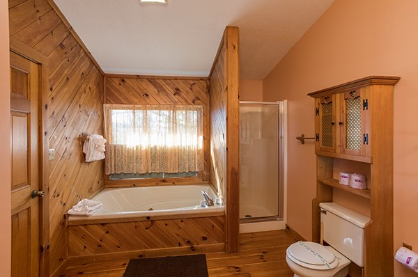 Bathroom with jacuzzi and walk in shower at Alone at the Top, a 3 bedroom cabin rental located in Pigeon Forge