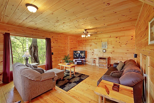 family room off the side of game room at bearly makin' it a 1 bedroom cabin rental located in gatlinburg