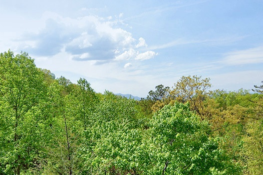 Woods and a view of the smoky mountains from Bearly Makin' It, a 1-bedroom cabin rental located in Gatlinburg