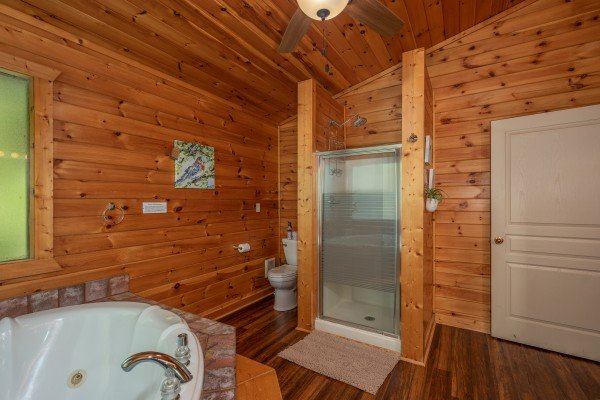 Bathroom with a jacuzzi tub and separate shower at Hawk's Heart Lodge, a 3 bedroom cabin rental located in Pigeon Forge