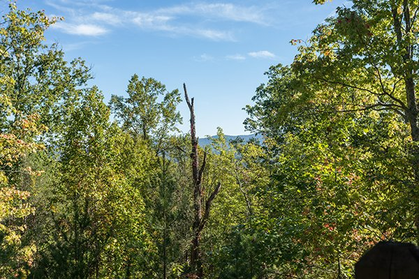 Wooded mountain view at Mountain Valley Hideaway, a 2 bedroom cabin rental located in Pigeon Forge