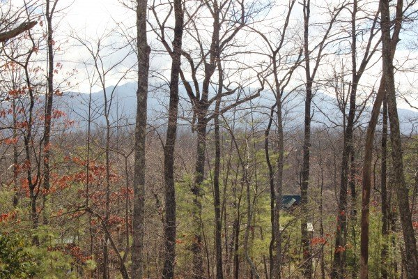 Winter mountain view at Bear View Lodge, a 2-bedroom cabin rental located in Gatlinburg