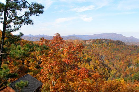 smoky mountain fall foilage seen from all that jazz a 1 bedroom cabin rental located in pigeon forge