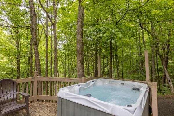 Trees surrounding the hot tub at Heavenly Hideaway, a 2-bedroom cabin rental located in Gatlinburg