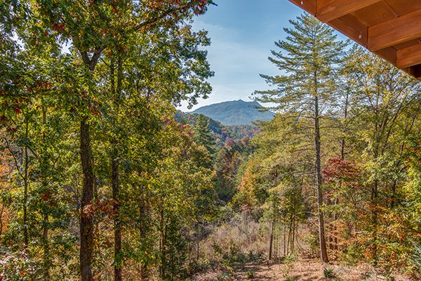 Mountain view from Bear Hug Hideaway, a 1-bedroom cabin rental located in Pigeon Forge