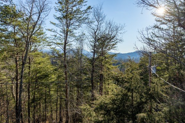 Tree views at Eagle Watch Den, a 5 bedroom cabin rental located in Pigeon Forge