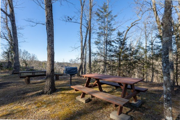 Picnic area at Eagle Watch Den, a 5 bedroom cabin rental located in Pigeon Forge
