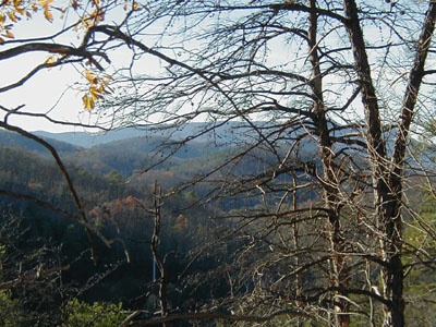 Smoky Mountain views seen from Deerly Beloved, a 1-bedroom cabin rental located in Gatlinburg