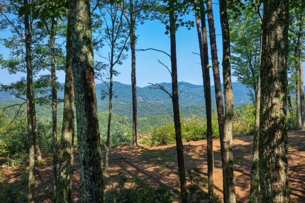 Mountain views through the woods at Bearfoot Adventure, a 2-bedroom cabin rental located in Gatlinburg