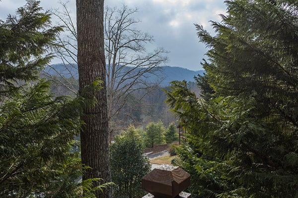 The view at 5 Star Celebration, a 1 bedroom cabin rental located in Pigeon Forge