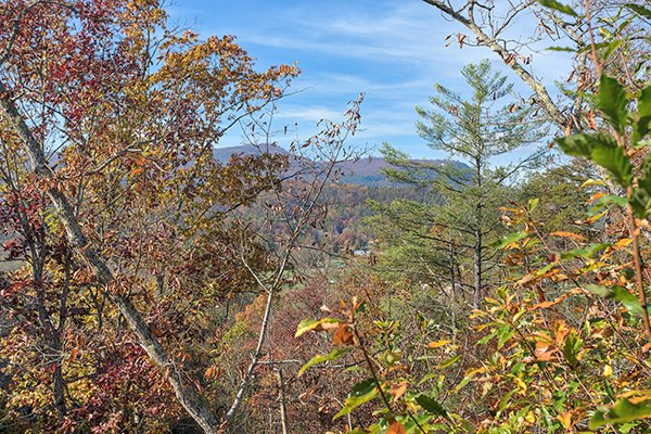 view from the area of 5 little cubs a 2 bedroom cabin rental located in pigeon forge