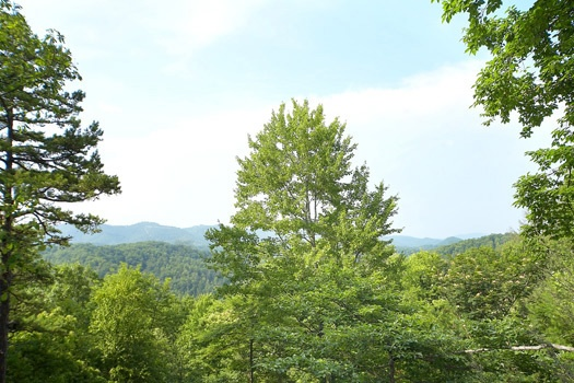 Scenic mountain view at 2 Lovin' Bears, a 1 bedroom cabin rental located in Gatlinburg