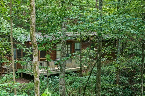 wooded exterior view of angel's dream a 1 bedroom cabin rental located in gatlinburg