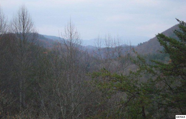 at honey bear hideaway a 1 bedroom cabin rental located in pigeon forge