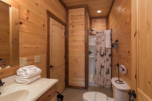 bathroom with a walk in shower at amazing grace a 3 bedroom cabin rental located in pigeon forge
