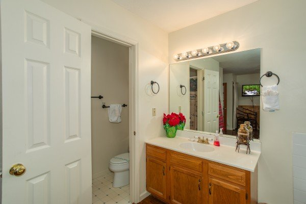 Bathroom vanity at Hillside Hideaway, a 1 bedroom cabin rental located in Pigeon Forge