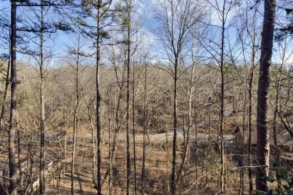 Wooded winter view at Hillside Hideaway, a 1 bedroom cabin rental located in Pigeon Forge