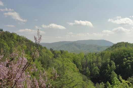 Spring mountain view at Sunset Vista View, a 1 bedroom cabin rental located in Pigeon Forge