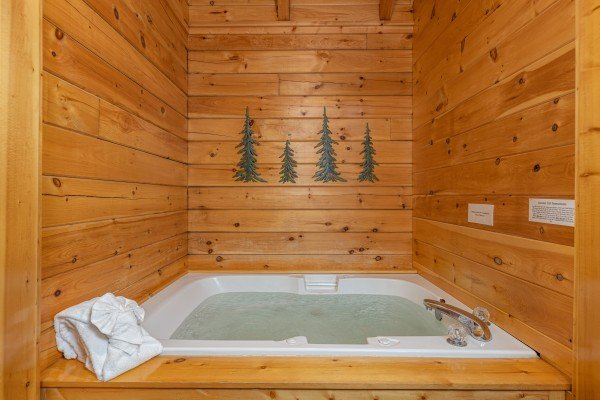 Jacuzzi in a bedroom at Location Location Location, a 1 bedroom cabin rental located in Pigeon Forge