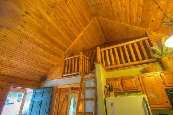 Looking up at the ladder and loft at Golden Memories, a 1-bedroom cabin rental located in Pigeon Forge