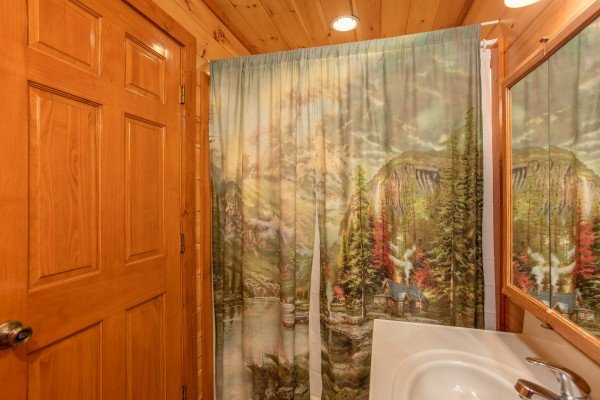 Bathroom with mountain themed decor at Pool'n Around in the Smokies, a 4 bedroom cabin rental located in Sevierville